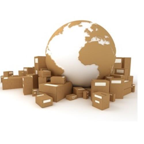 Na czym polega importowanie towarów i usług?