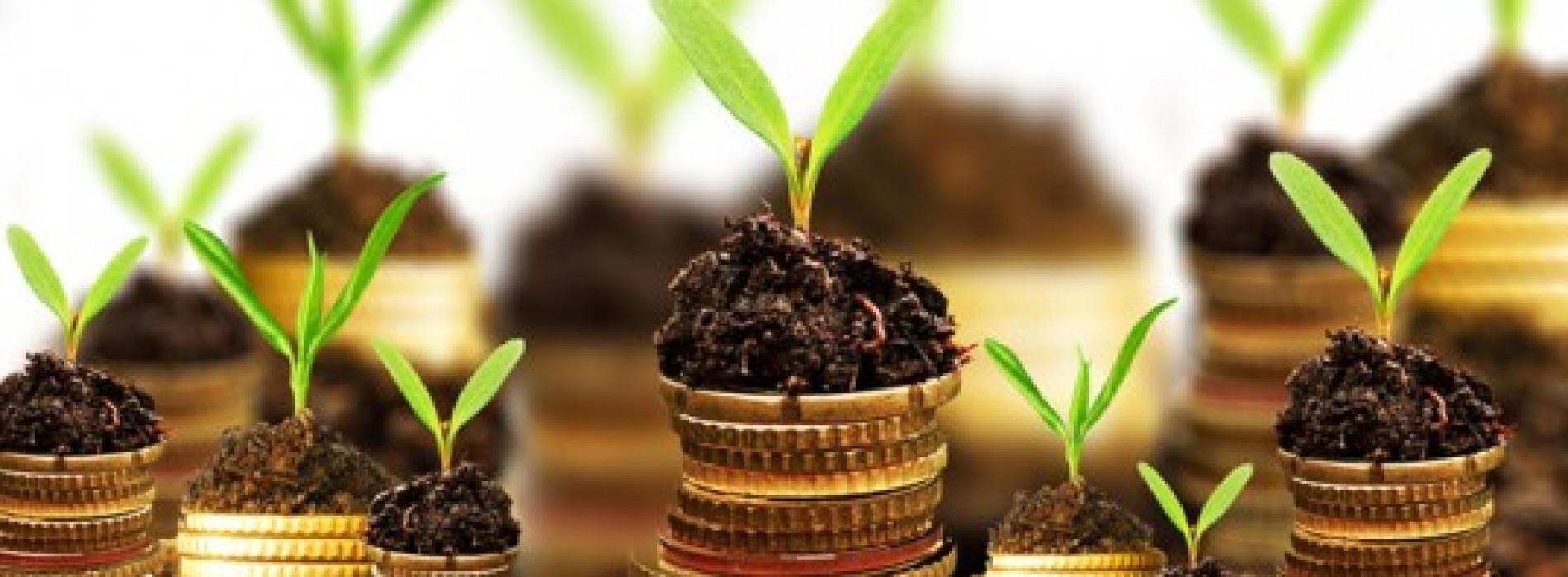 Bezpieczeństwo czy zysk? 5 pytań, na które warto znać odpowiedź przed zainwestowaniem w fundusze